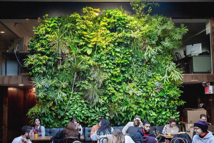 Plant Walls by Design