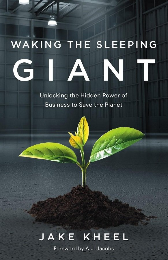 What is Waking the Sleeping Giant?